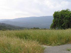 Scenic overlook near Stanford