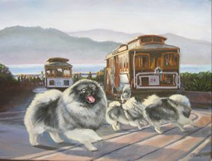 Cable car Kees
