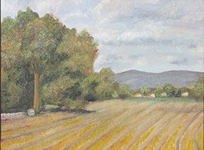 Farm Furrowsi
