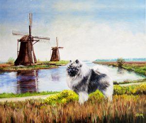 Windmill Kees